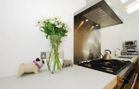 Additional image from the New kitchen extension in Fulham project