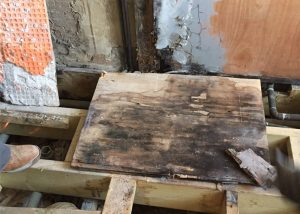 The plywood base under the floor tiles was water damaged